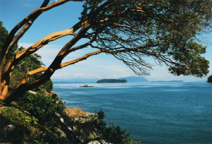 Sucia Island - Sail the San Juans - sailing cruises to san juan islands from bellingham